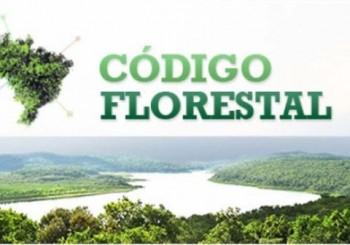 Código-Florestal-696x435