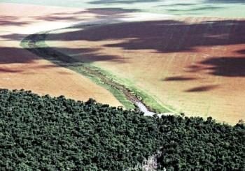 desmatamento-no-mato-grosso
